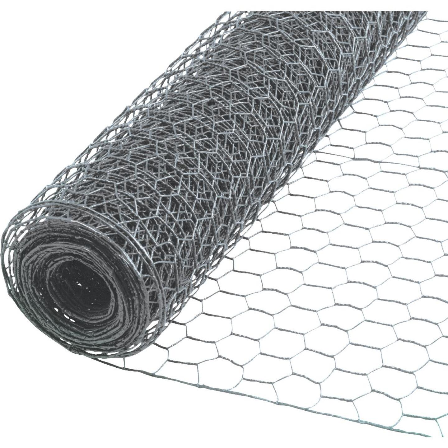 Do it 2 In. x 24 In. H. x 25 Ft. L. Hexagonal Wire Poultry Netting Image 1
